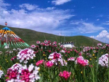 西宁到塔尔寺、青海湖、茶卡盐湖3日游 青海三日游攻略 天天发